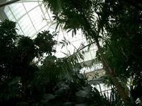 conservatory_main_dome.jpg
